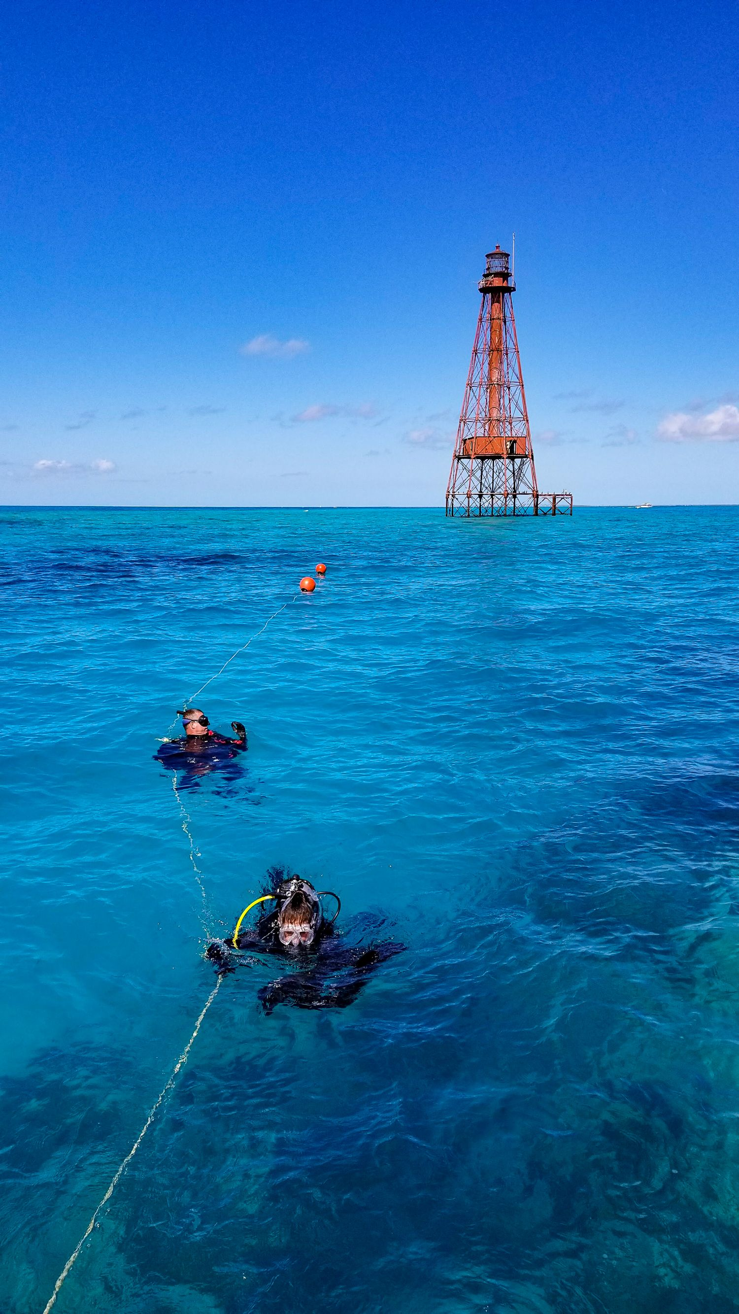 Sombrero Reef, Florida Is Such An Incredible Dive And