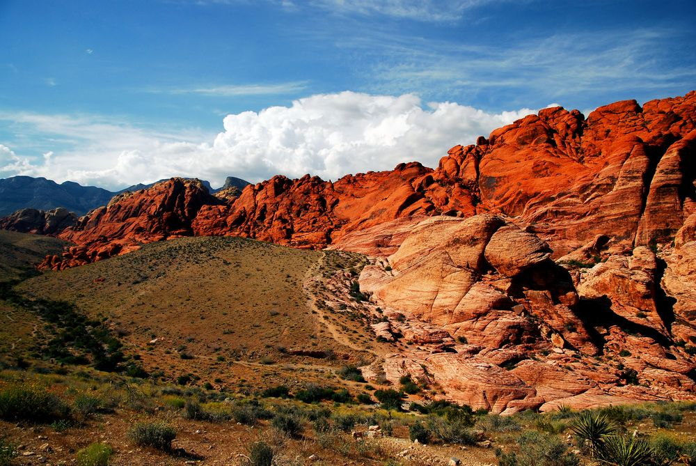 Check Out Red Rock Canyon On Your Next Vacation To Vegas
