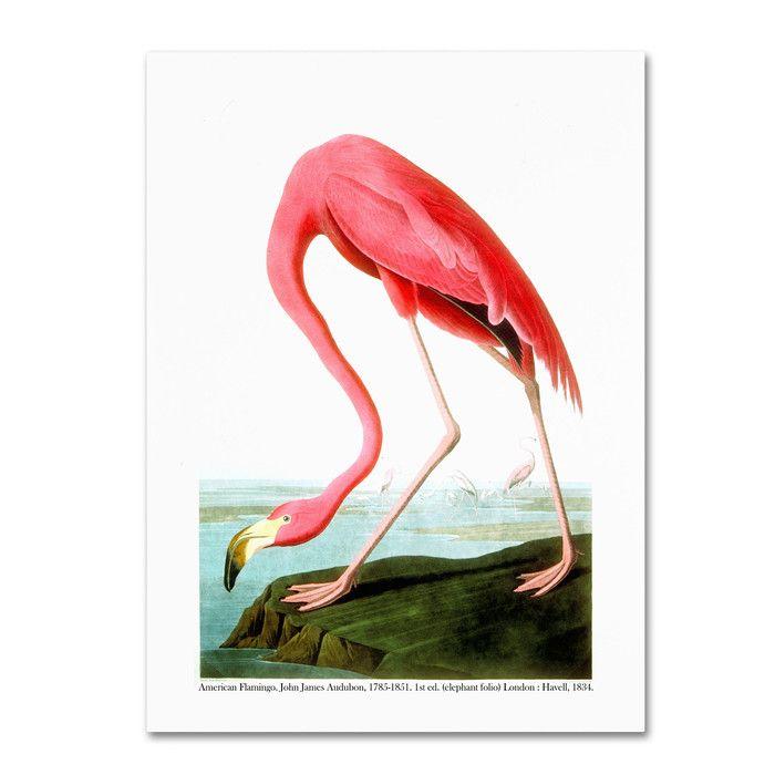 American Flamingo Canvas Print | Joss & Main