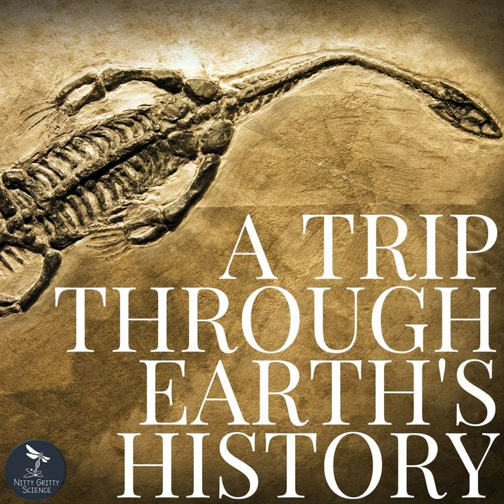 A Trip Through Earth's History Earth, space science