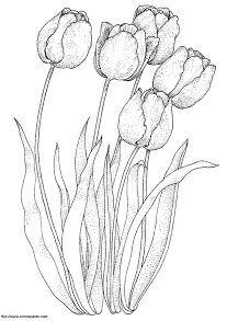 Plantillas De Flores Para Bordar A Mano Tulipanes Dibujo Produccion Artistica Dibujos