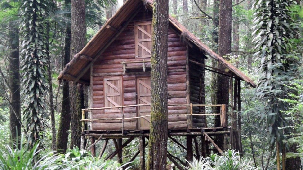 Tempat Wisata Gunung Masigit Yang Pas Buat Kamu Yang Hobi Jalan Jalan Tempat Rumah Pohon Konservasi