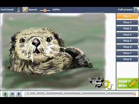 ▷ How to Draw sea otters - YouTube | Draw | Pinterest