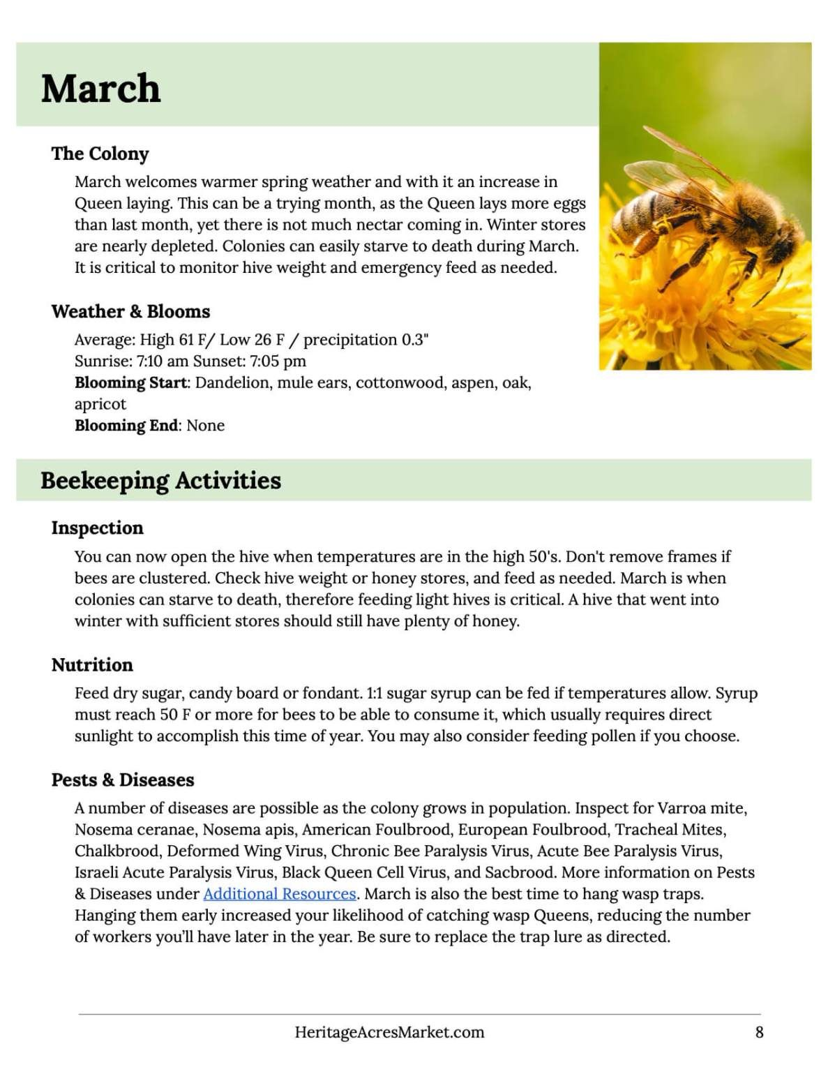 Free Insurance For Honey Bees Spring Weather Warm Spring Bee