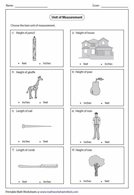 Choose The Best Unit Of Measurement Measurement Worksheets Worksheets The Unit