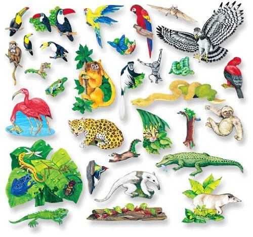 Pin By Lara Cropsey On Jungle Rainforest Animals Diorama