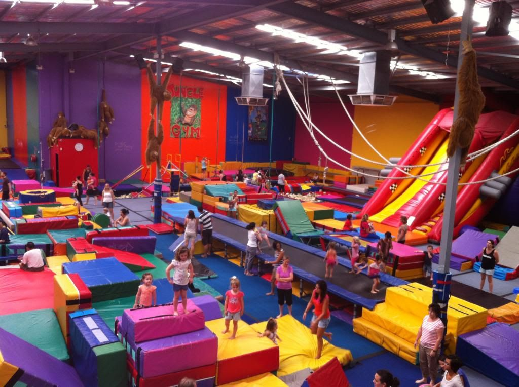 Review Information And Pictures Of Jungle Gym Willetton