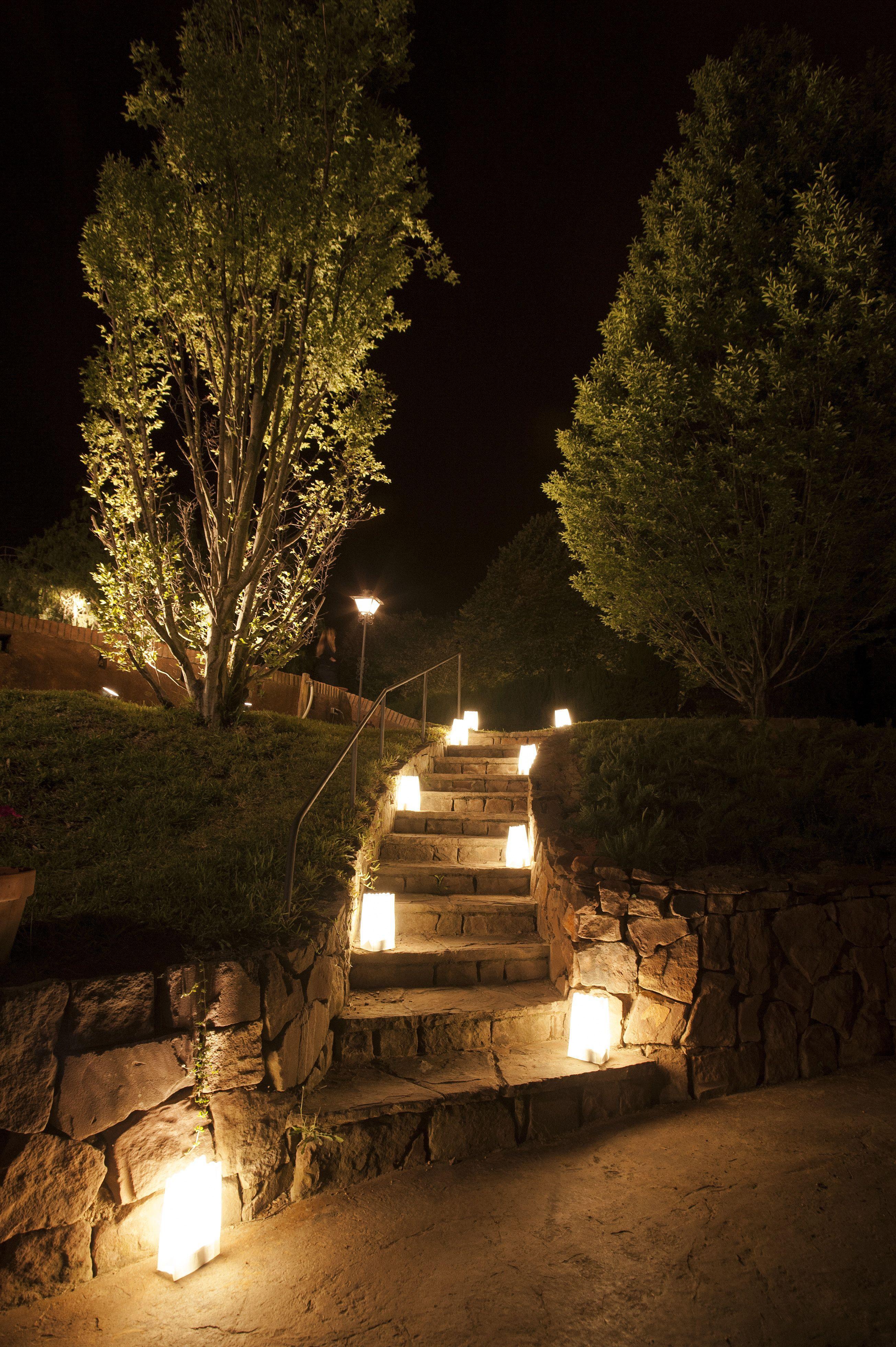 Luminarias Inalámbricas Cor Cor Eventos Bodas Terrazas