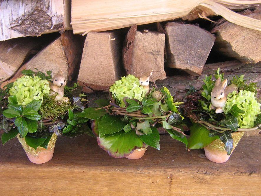 Wohnen Und Garten De http foto wohnen und garten de drei kleine straeusschen top foto