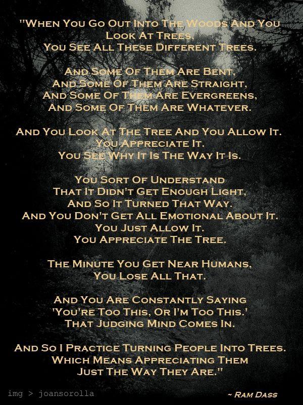 Ram Dass Quote Books And Stuff