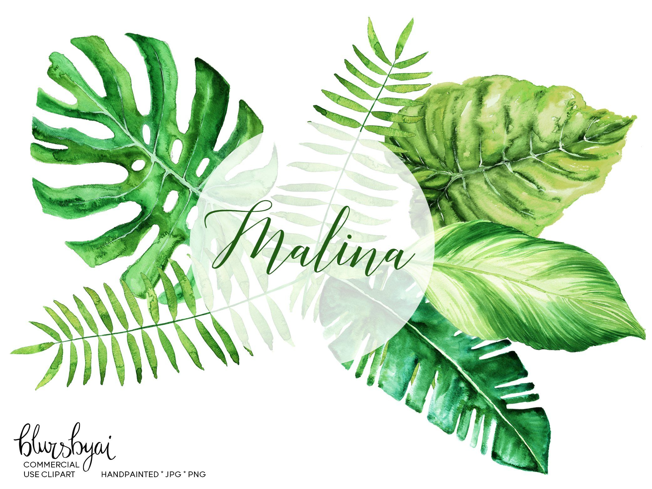 Watercolor Tropical Leaves Clipart Monstera Deliciosa Banana