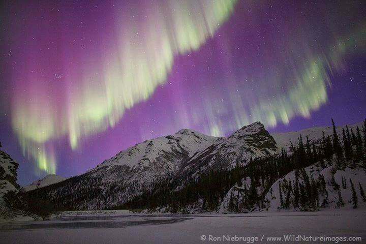 Aurora over the Alaska Brooks Range. Photo by: Niebrugge Images