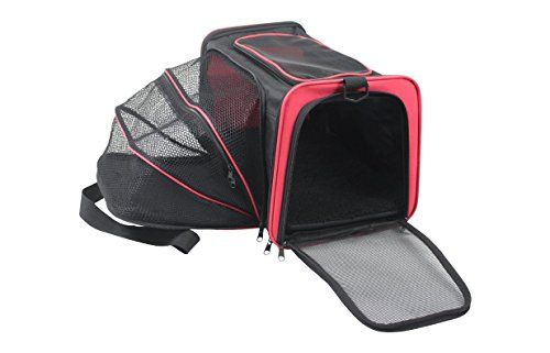BIGWING Style-Desplegable Transportín Bolso para Mascota ... https://www.amazon.es/dp/B01NGUDCXM/ref=cm_sw_r_pi_dp_x_CoHyybBTAK13Q