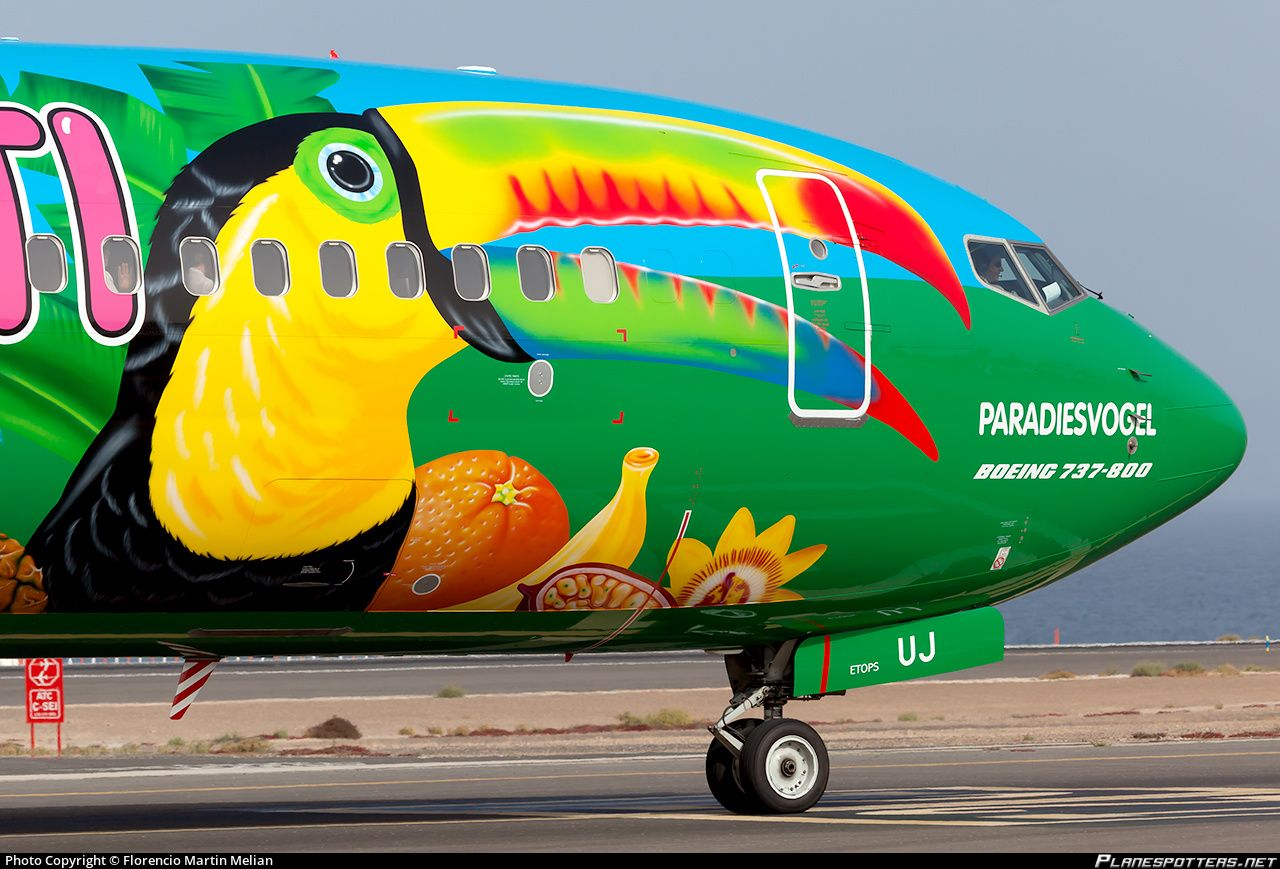 самолет с тигром 16 тыс изображений найдено в Яндекс