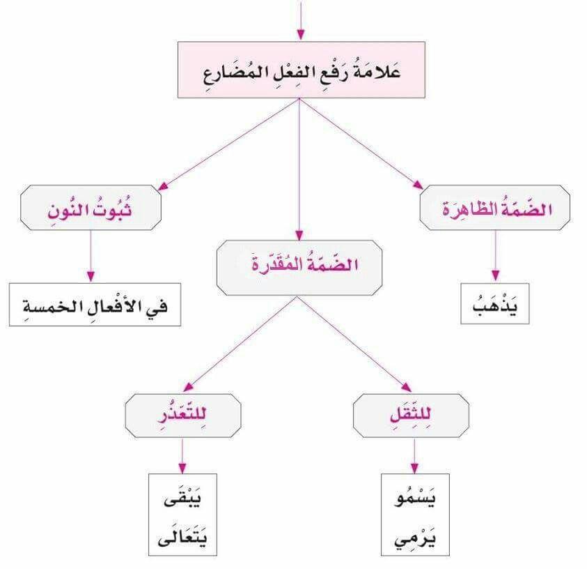 علامة رفع الفعل المضارع Learning Arabic Learn Arabic Language Arabic Language
