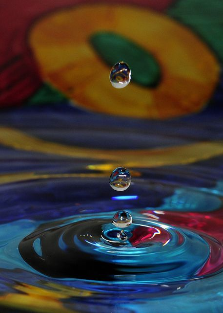 drops of water  by Evelyn Hayes
