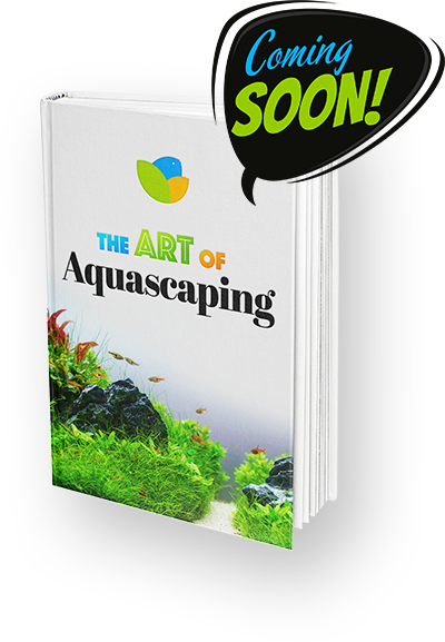 Getting Started with Aquascaping (With images) | Planted ...
