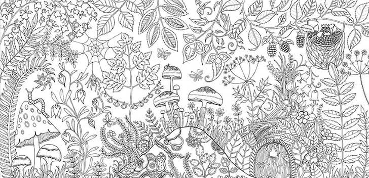 aduts coloring pages - Pesquisa Google   Coloring Pages II ...