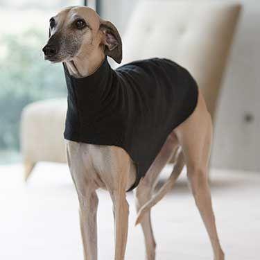 Fleecepullover GU Lieblingsstücke für den Hund | hund | Pinterest ...
