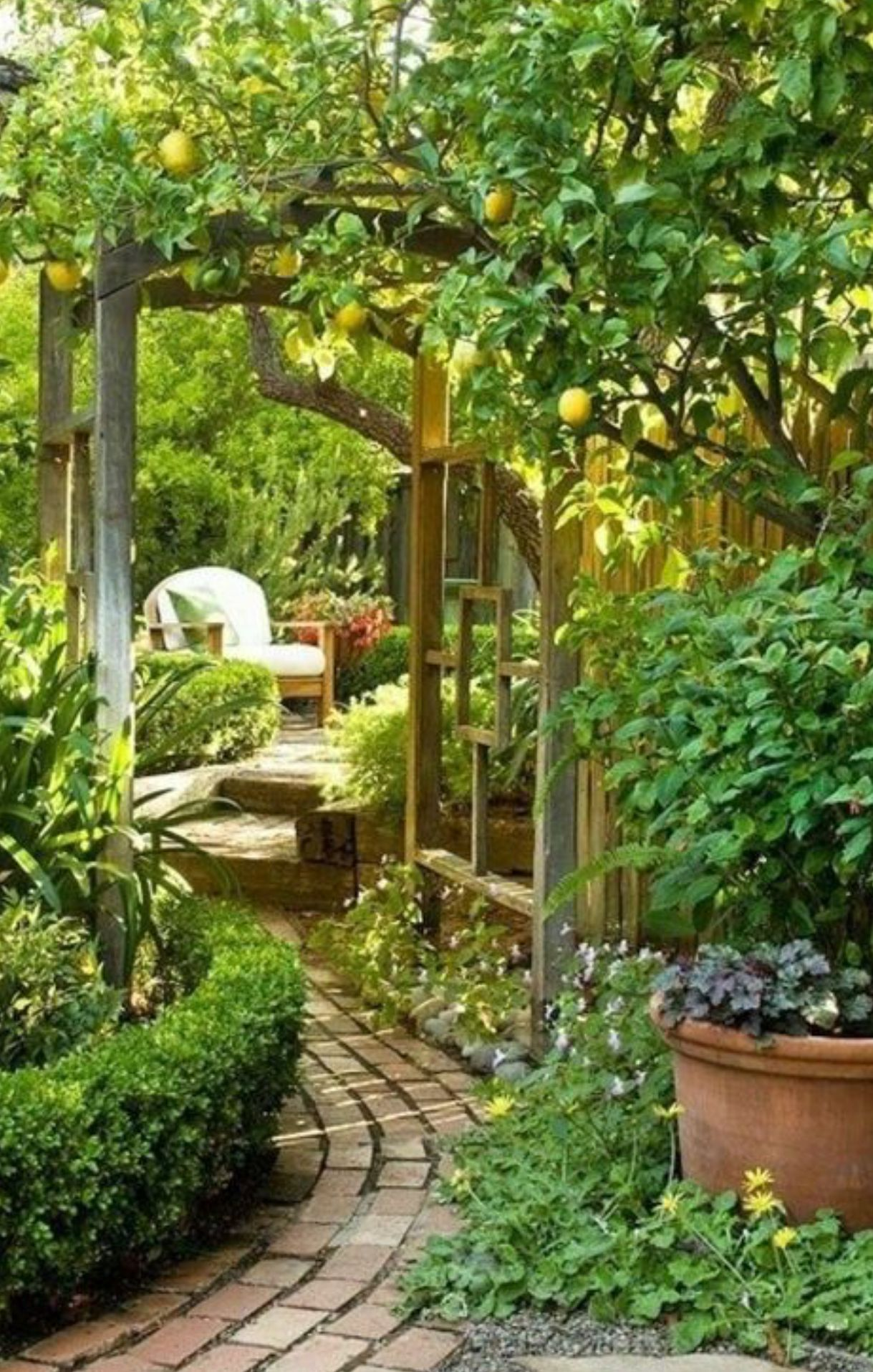 Secret Garden Room On My Patio Outdoor Living