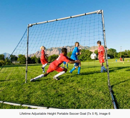 Adjustable Soccer Nets For Your Future World Cup Star Soccer Goal Soccer