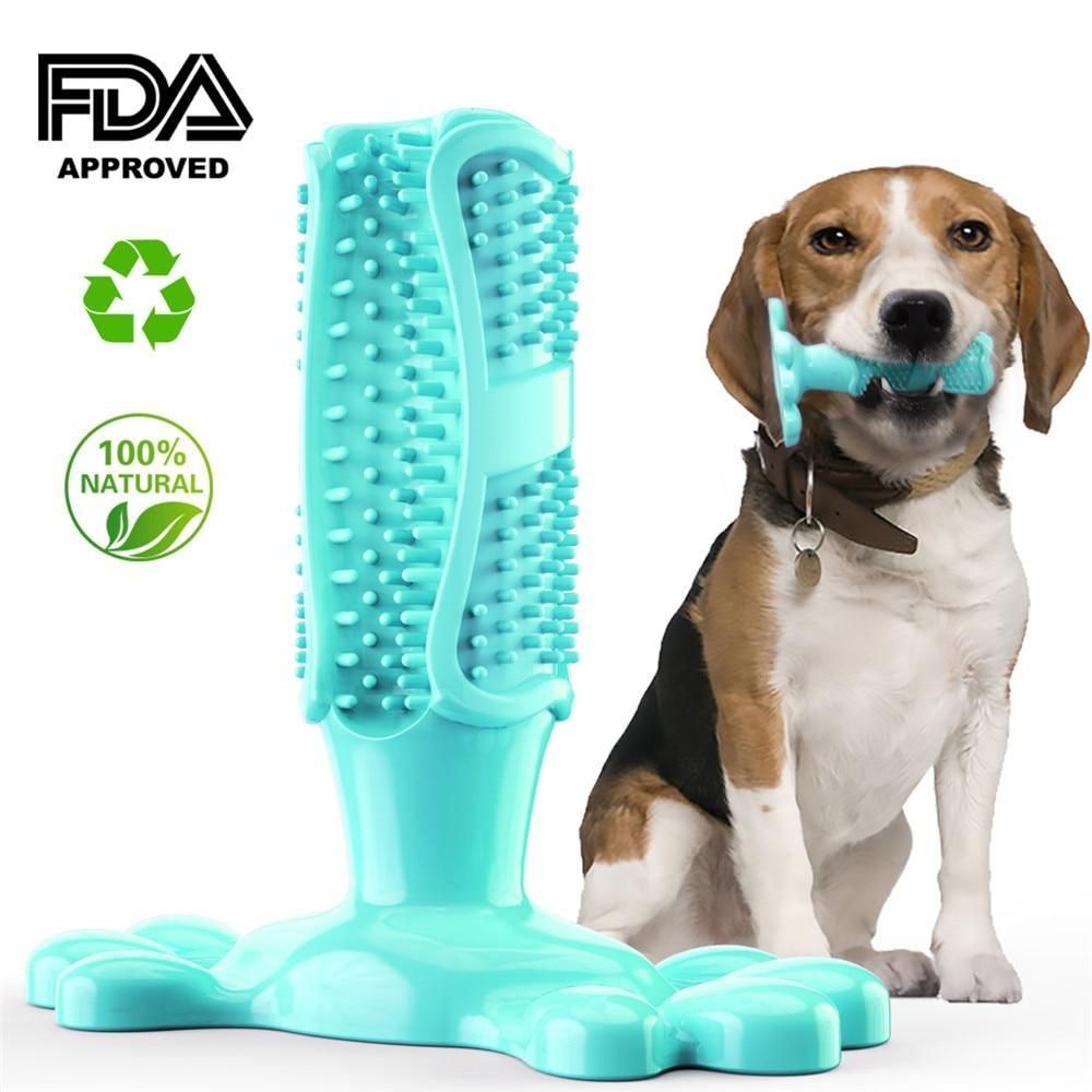 Chewing dog toothbrush in 2020 dog toothbrush teeth