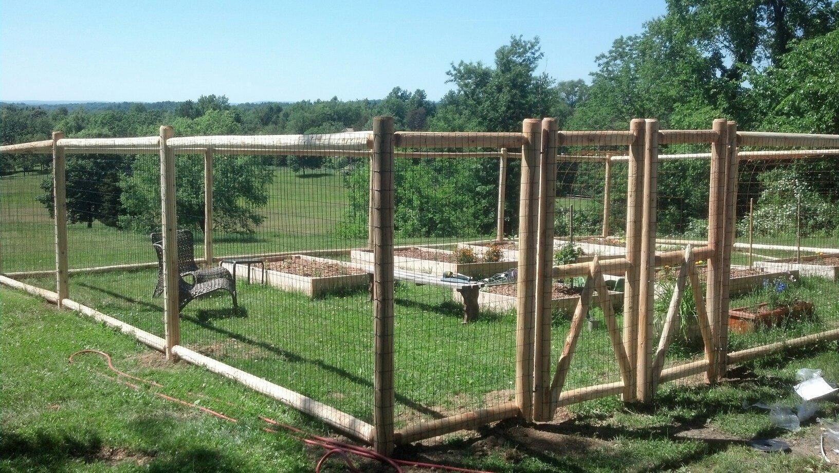 2 Rail Deer Fence   Beach Garden   Pinterest   Deer fence, Fences ...