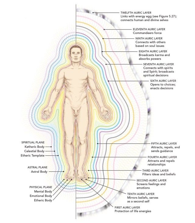 spiritual anatomy :: the-subtle-body-and-aura-diagram | Study It ...