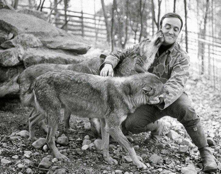 Gijón Xixón Felix Felix Rodriguez Animales