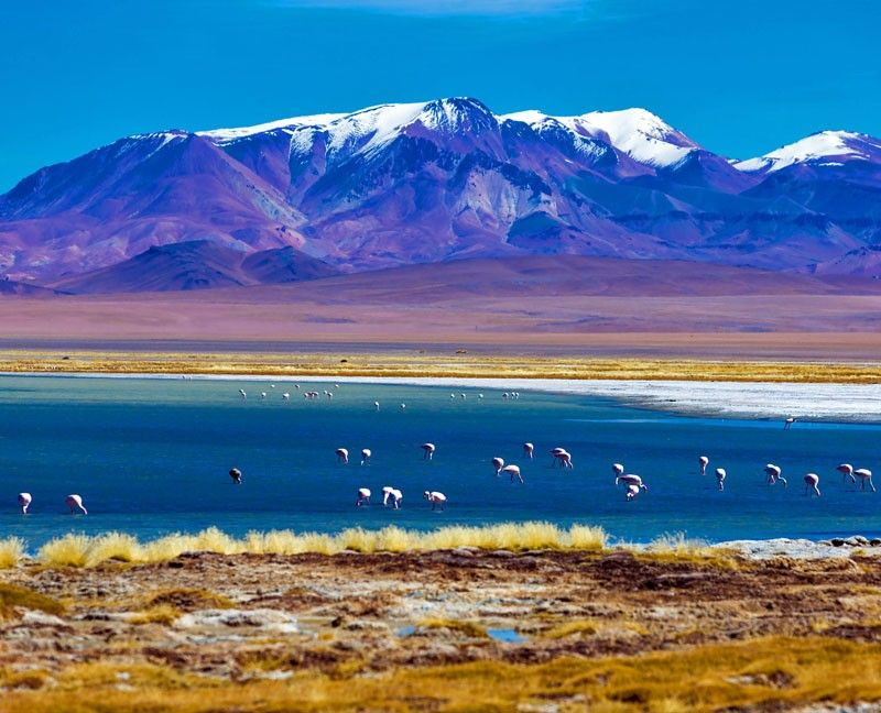 South America Vacations Have Always Been Popular Here Are The - Best south american vacations