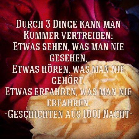 Pin On Zitate Die Das Leben Schrieb Quotes