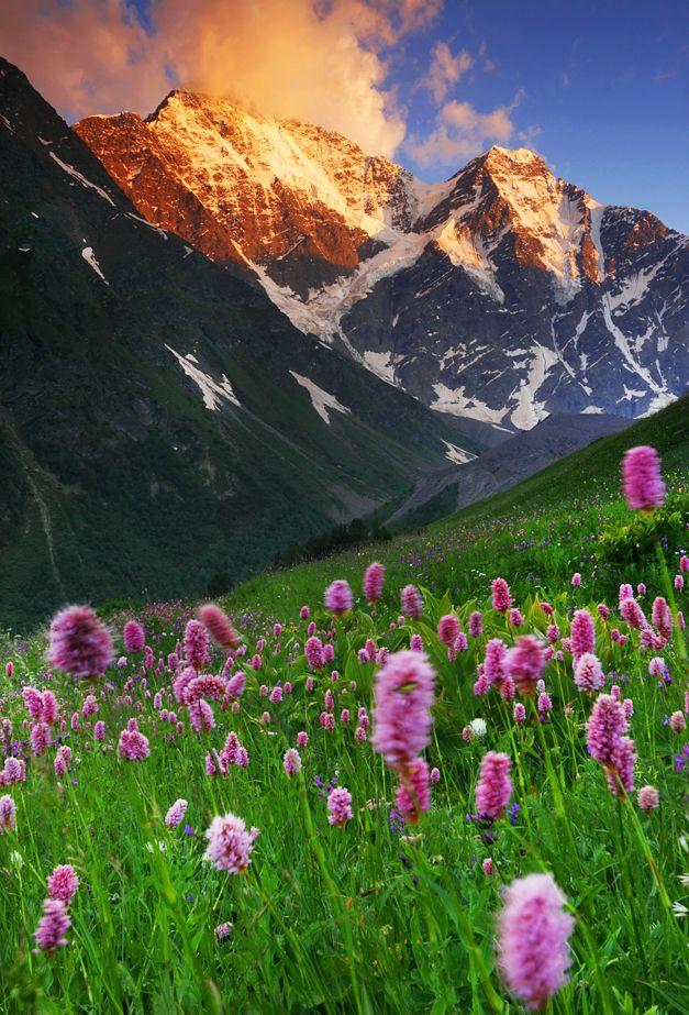Caucasus Summer Landscape Summer Landscape Beautiful Landscapes Beautiful Nature