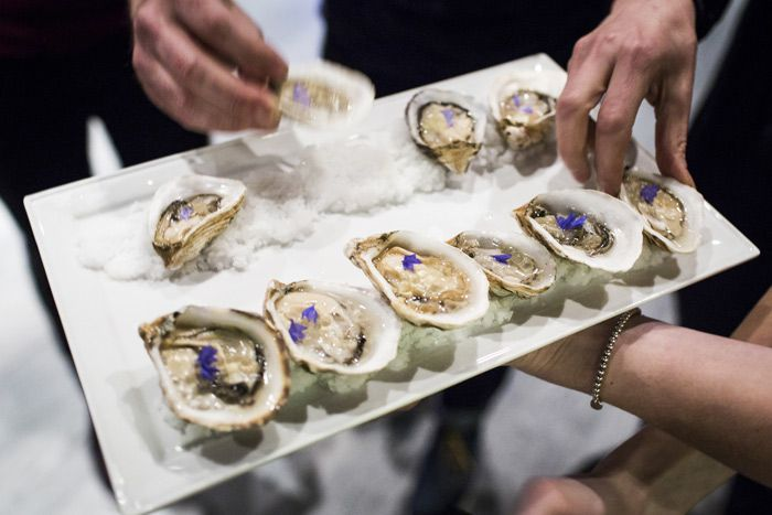 Guests snacked on an elegant presentation of oysters at the TED Prize dinner reception on March 17.  Photo: RYAN LASH/TED
