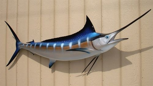 Blue Marlin Fish Mount Two Sided Wall Mount Fish Replica 80 Inches Blue Marlin Fish Fish Fish Mounts