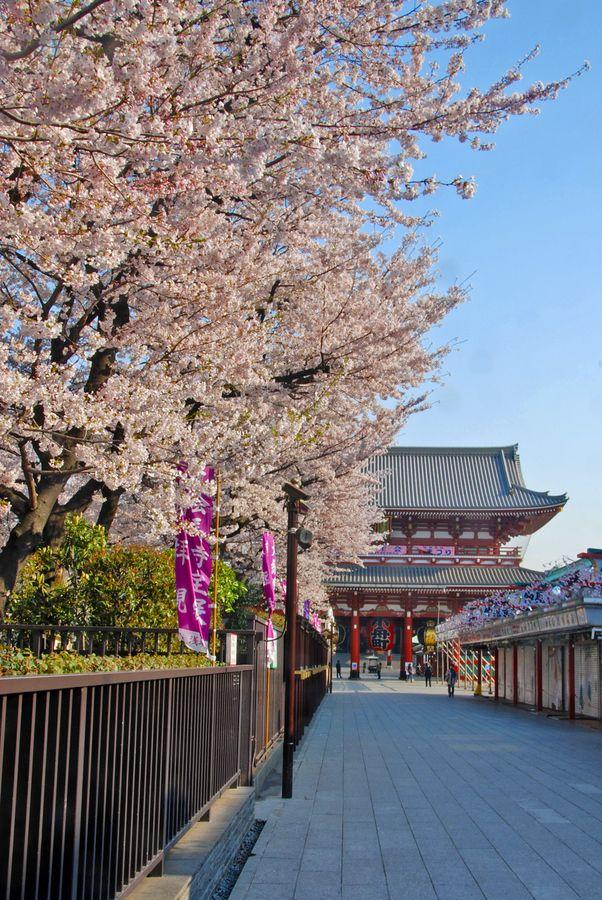 Senjori Temple in Asakusa, Tokyo