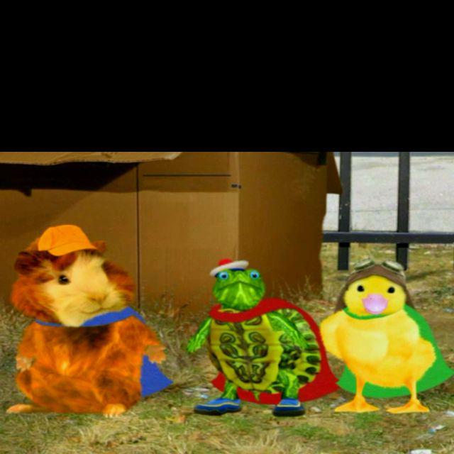 Wonder Pets Wonder Pets Pets Favorite Tv Shows