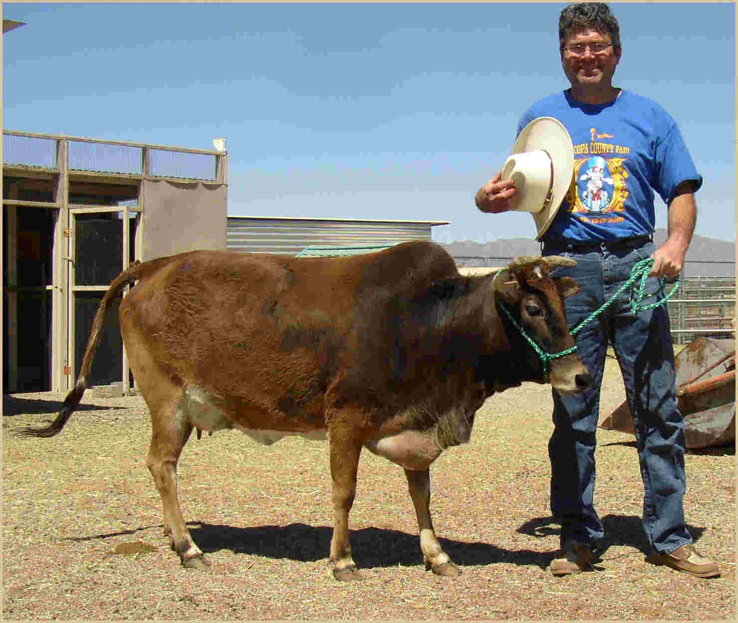 I'd Also Like To Have Some Zebu Cattle. They're Small And