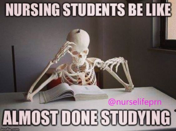 Funny Memes About Life Hacks : Funny and relatable nursing school memes school nursing