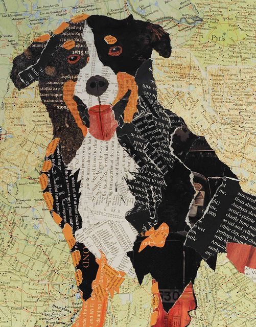 Dog Collage 1 by Carol Mikkelson, via Flickr