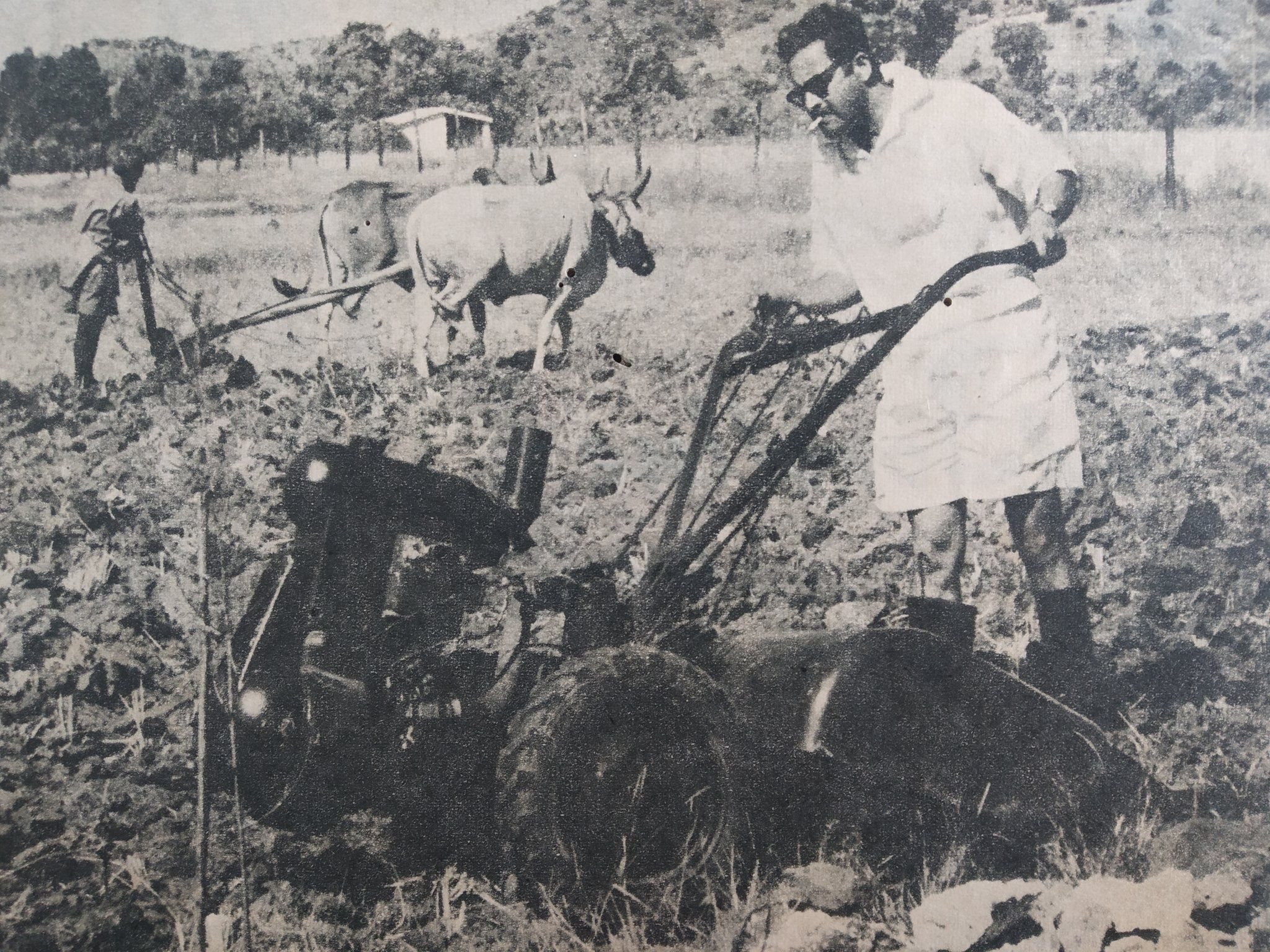 GuruDutt ploughing the fields at his farm in lonavala