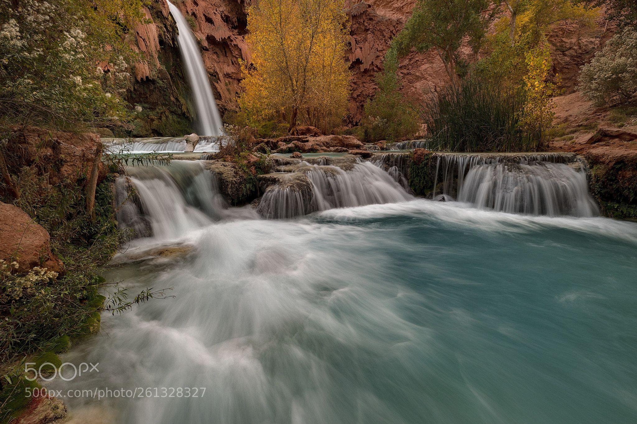 Fall Rush By Danilofaria