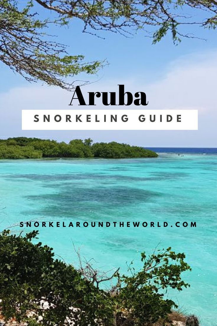 Explore The Best Beaches In South Carolina: The Best Beaches To Hang Out And Snorkel In Aruba! Explore