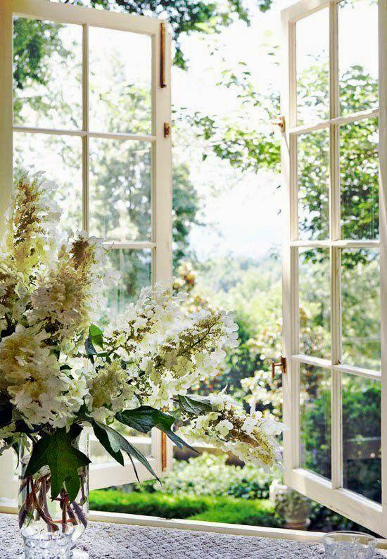 The Wind Through Window