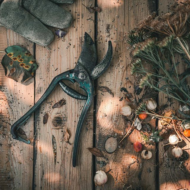 Wandvertäfelung selber bauen Naturgarten