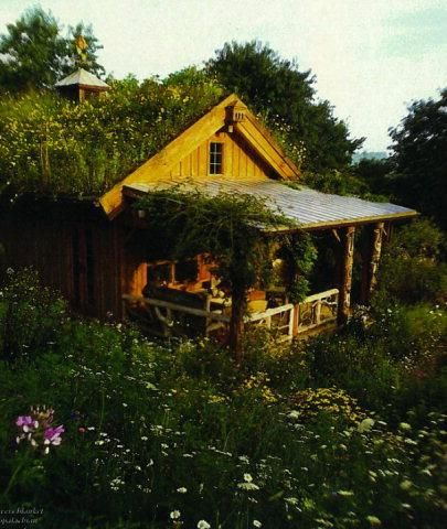 Grass-roofed cabin