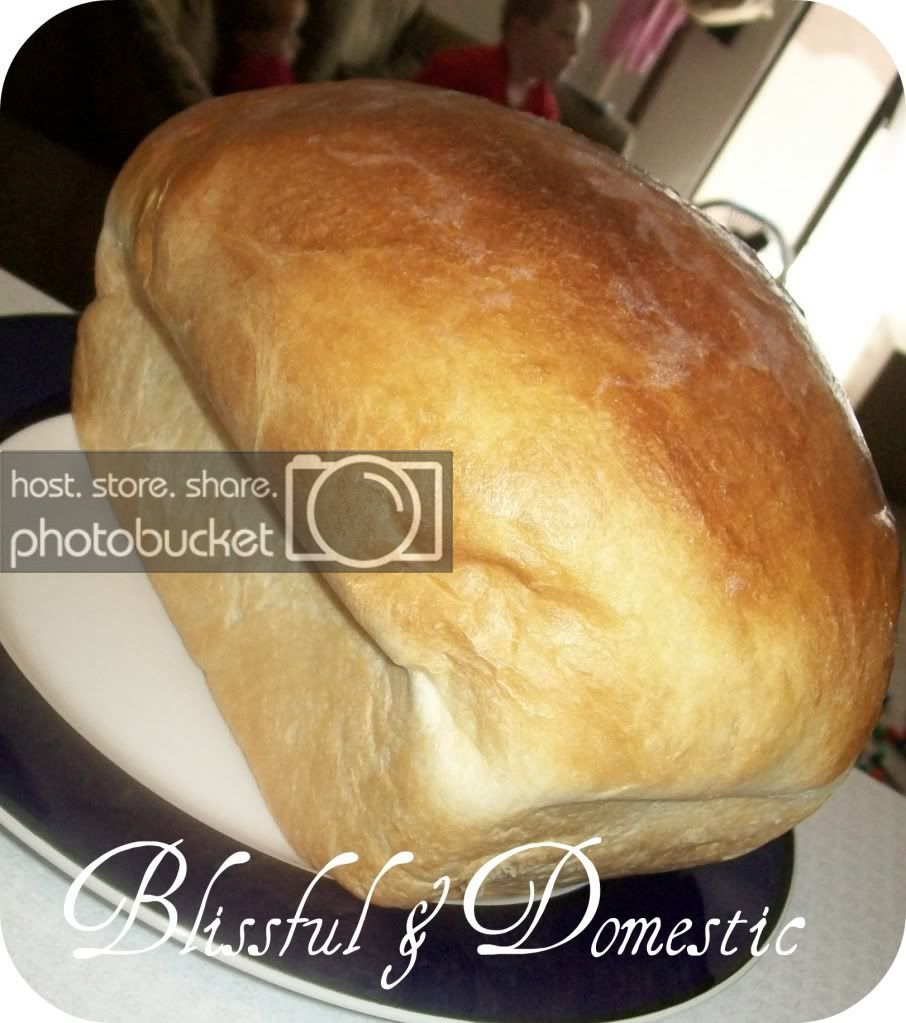 Blissful And Domestic Creating A Beautiful Life On Less Old Fashioned Buttermilk White Bread Best Bread Recipe Buttermilk Recipes Bread Machine