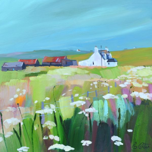 Pam Carter. Cluster and Machair, Uist.