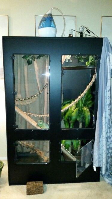 Pin On Chinese Water Dragons New enclosures from animal plastics. pin on chinese water dragons