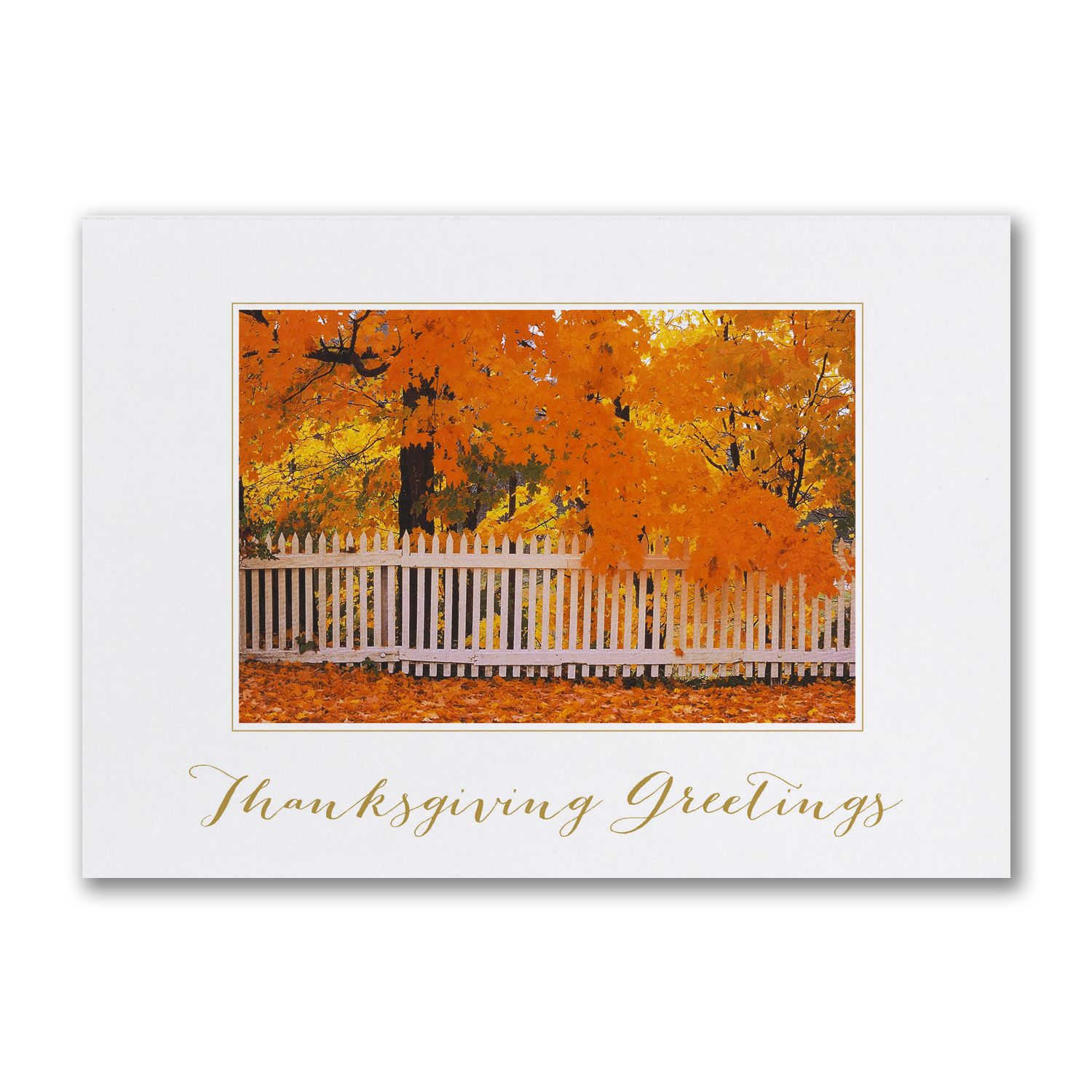Vibrant Autumn Day Personalized Business Thanksgiving Cards http ...