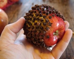 Clove apple pomander, just like Ma in Little House in the Big Woods